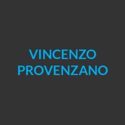 ECI_docenti_Vincenzo_Provenzano